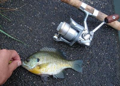 fishing20070929_004.JPG
